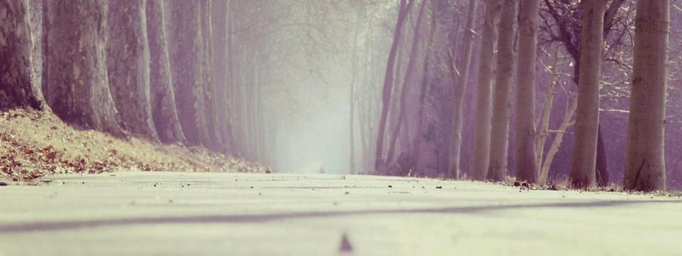 Sorgerechtsverfügung: kostenlos aufsetzen und beruhigt sein