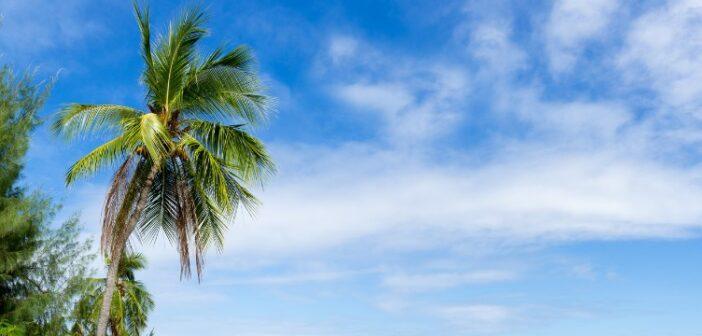 Reiseversicherung: Bei einer Reise nach Hawaii bieten sich mehrere Reiserversicherungen an.
